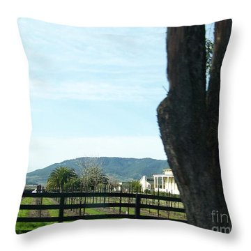 Throw Pillow featuring the photograph Winery by Bobbee Rickard
