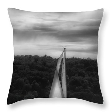 Wing On Wing Throw Pillow