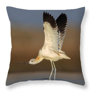 Throw Pillow featuring the photograph Wing Stretch by Daniel Behm