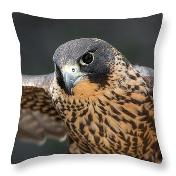 Winged Portrait Throw Pillow
