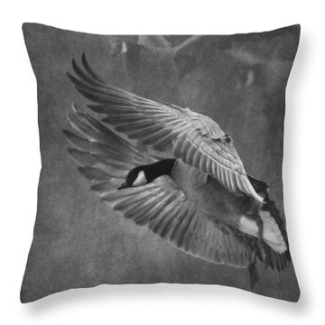 Winged Symphony Throw Pillow by Angie Vogel
