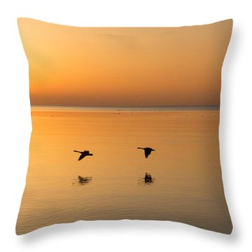 Throw Pillow featuring the photograph Wings At Sunrise by Georgia Mizuleva
