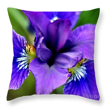 Wings I Throw Pillow by Valerie Fuqua