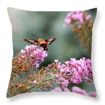 Throw Pillow featuring the photograph Wings In The Flowers by Kerri Farley