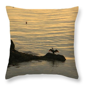 Wings Throw Pillow by Jean Goodwin Brooks