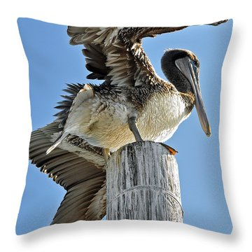 Wings Of A Pelican Throw Pillow by Susan Wiedmann