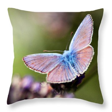 Wings Of Tenderness Throw Pillow by Martina  Rathgens