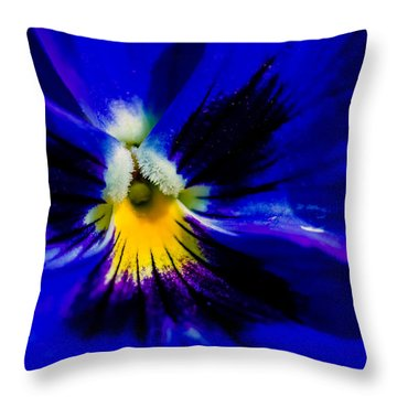 Wings Of The Night Throw Pillow by Alexander Senin