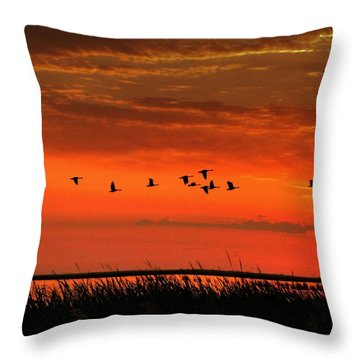 Wings On High Throw Pillow