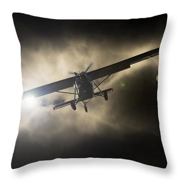 Throw Pillow featuring the photograph Wings by Paul Job