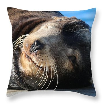 Wink Wink Throw Pillow by Christy Pooschke