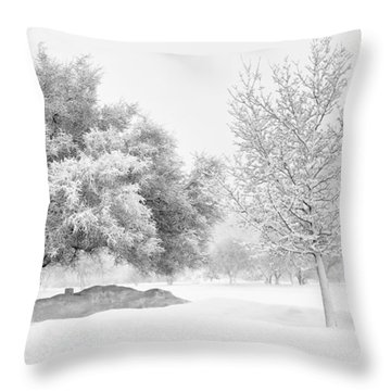Winona Snowstorm Throw Pillow