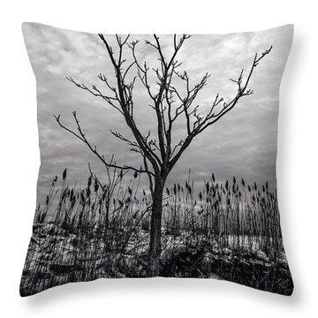 Winter 2015 Barnstable Harbor Throw Pillow