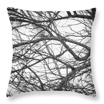 Winter 2015 Throw Pillow
