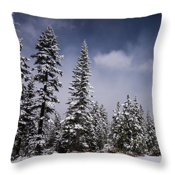 Throw Pillow featuring the photograph Winter Again by Janis Knight