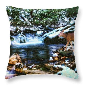 Winter Along Rock Castle  Throw Pillow