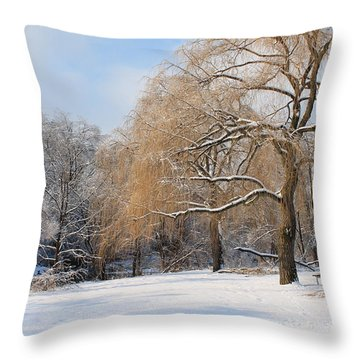 Throw Pillow featuring the photograph Winter Along The River by Nina Silver