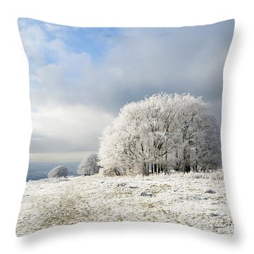 Winter Throw Pillow by Anne Gilbert