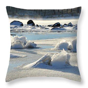Throw Pillow featuring the photograph Winter Art by Randi Grace Nilsberg