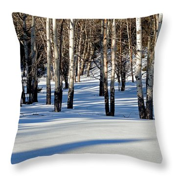 Throw Pillow featuring the photograph Winter Aspens by Jack Bell