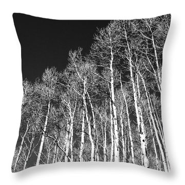Throw Pillow featuring the photograph Winter Aspens by Roselynne Broussard