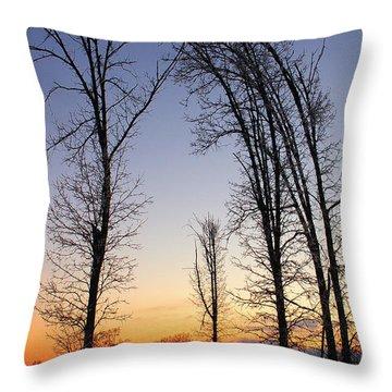 Winter At Dusk Throw Pillow by Randy Pollard