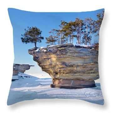 Winter At Port Austin's Turnip Rock Throw Pillow by Craig Sterken