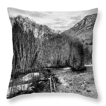 Winter Backroads Englishman River Throw Pillow