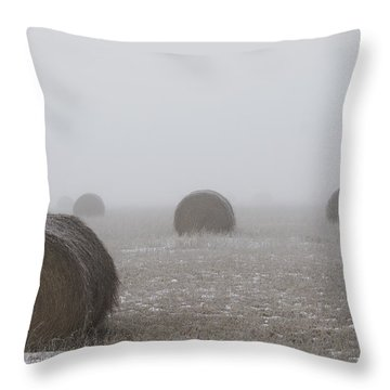 Winter Bales  Throw Pillow