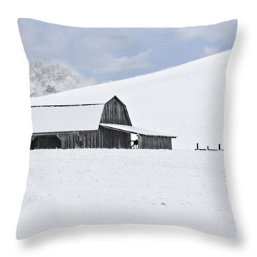 Winter Barn Throw Pillow by Benanne Stiens
