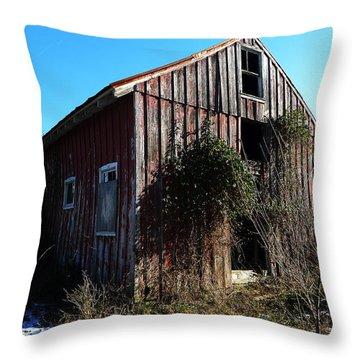 Winter Barn Throw Pillow by Richard Reeve