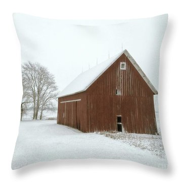 Winter Barn Throw Pillow by Tim Good