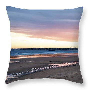 Winter Beach Throw Pillow by Richard Bean
