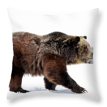 Winter Bear Walk Throw Pillow