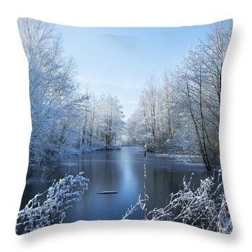 Winter Beauty Throw Pillow by Svetlana Sewell