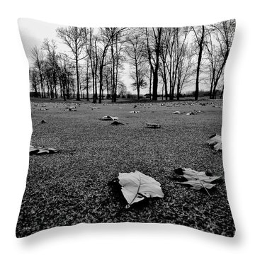 Winter Beckons Throw Pillow by Benjamin Yeager