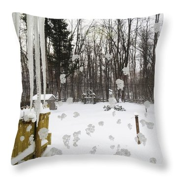 Winter Below Zero 2 Throw Pillow