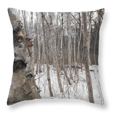Winter Birch Throw Pillow by Erick Schmidt