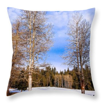 Winter Birch Throw Pillow