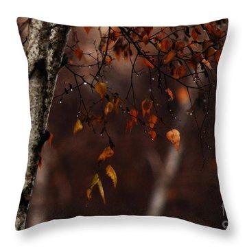 Winter Birch Throw Pillow by Linda Shafer