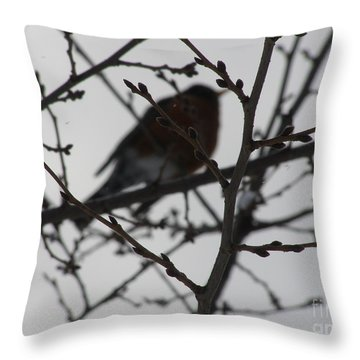 Winter Bird Throw Pillow