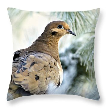 Winter Bird Mourning Dove Throw Pillow by Christina Rollo