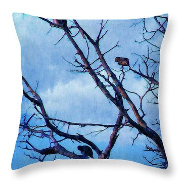 Throw Pillow featuring the photograph Winter Birds by Timothy Bulone