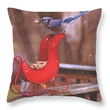 Winter Blue Jay #1 Throw Pillow