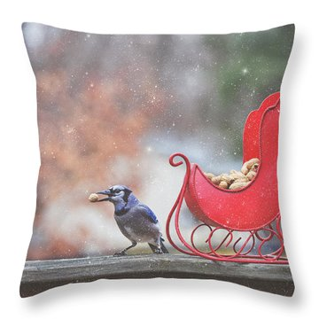 Winter Blue Jay #2 Throw Pillow