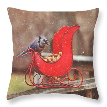 Winter Blue Jay #3 Throw Pillow