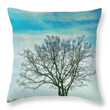 Throw Pillow featuring the photograph Winter Blues by Gary Slawsky