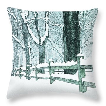 Winter Blues Throw Pillow by John Stephens