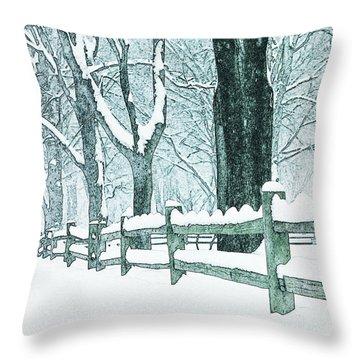Winter Blues Throw Pillow by John Stephens