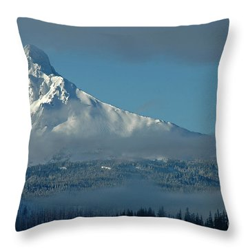 Throw Pillow featuring the photograph Winter Blues by Nick  Boren
